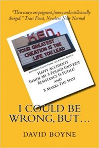 I Could Be Wrong, But by David Boyne